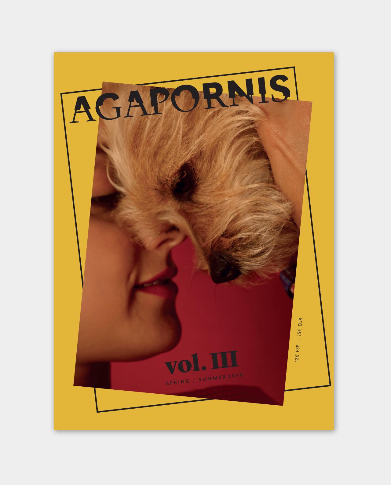 agapornis3